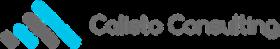 Calisto Consulting, SAP (BFC , BPC , FIM , ICS), ORACLE (HFM, SMARTVIEW)